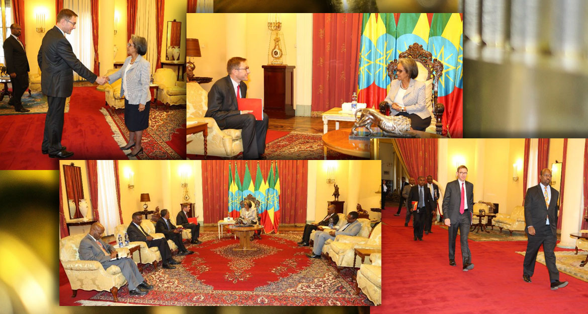 Total Ethiopia at the Presidential palace